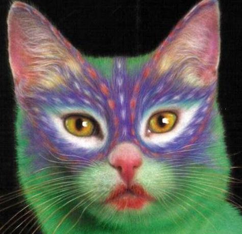 Pintar a un gato