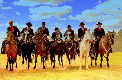 Onde Comprar Adesivo De Geladeira Em Recife ~ Fotos de caballos, compañero inseparable del gaucho