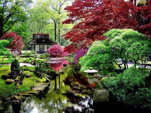 Fotos de jardines japoneses for Jardin estilo japones