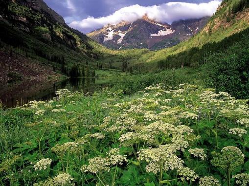 paisaje naturaleza
