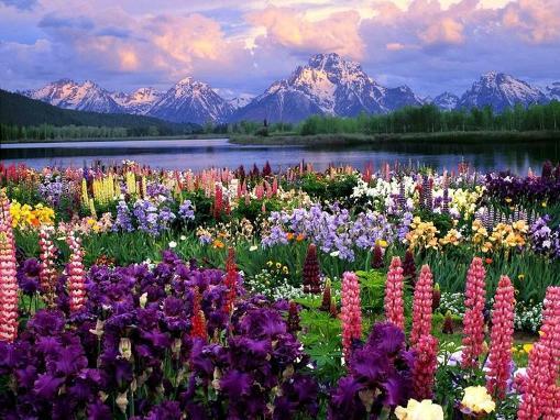 Los paisajes hermosos que nos brinda el planeta tierra