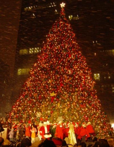 Rboles de navidad gigantes de todo el mundo taringa for Cuando se pone el arbol de navidad