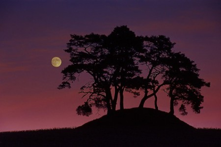 Fotos de noche, amiga luna