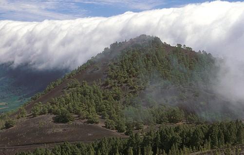 Fotos de los mares de nubes en Canarias