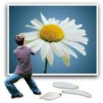 Fotos artisticas: Imagen en tres dimensiones