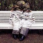 Desiree Palmen, el arte del camuflaje