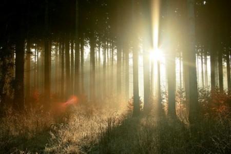 Cae la tarde… el Sol se pone