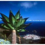 Fotos de paisajes: Canarias y el mar