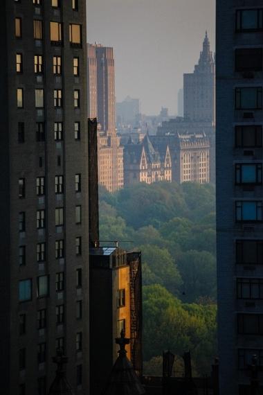 Central Park en New York