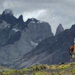 Paisajes del Mundo: Las Torres del Paine en Chile