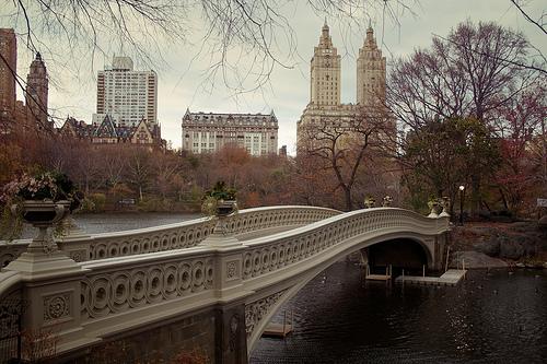 Puente en Central Park