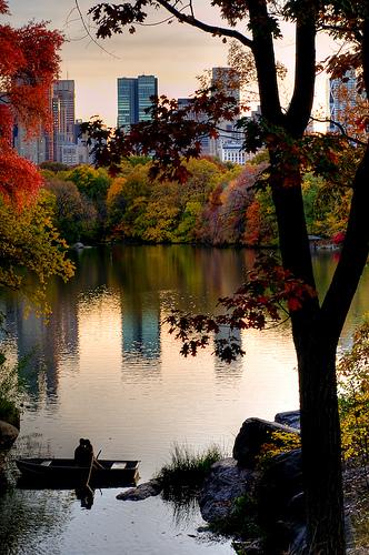 Romance en Central Park