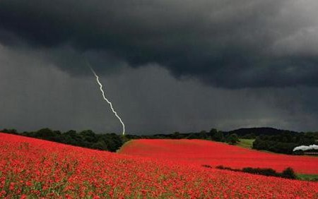 Danny Beath, Travel Photo of the Year 2012