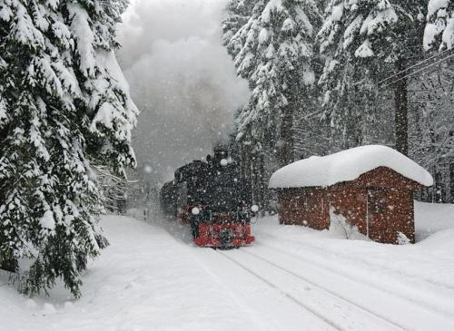Foto de tren en invierno
