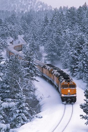Foto de tren por bosque nevado