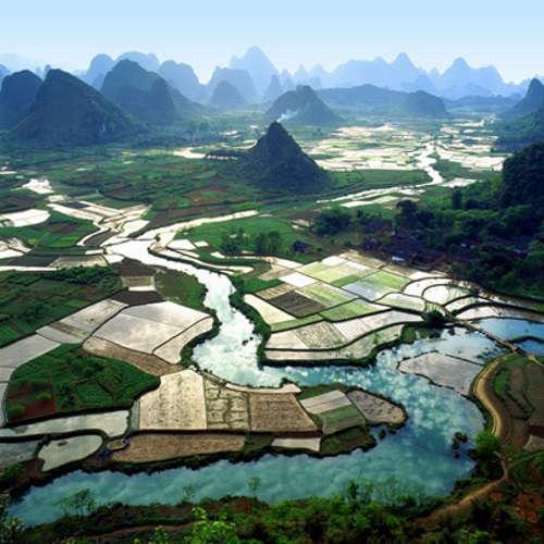 campos China