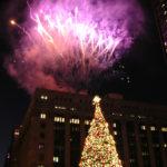 Fotos de un árbol de Navidad peculiar