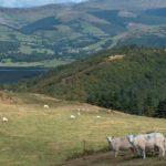 Paisajes rurales de Gales en fotos