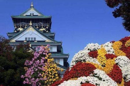 Fotos de la primavera en Japón