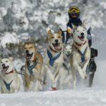 Pirena, espectaculo de fuerza y belleza en la nieve