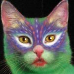 Fotos de gatos pintados