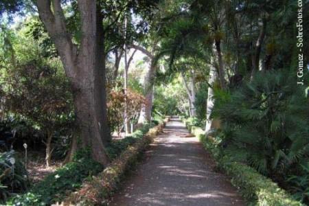 Paseo por el Jardín Botánico del Puerto de la Cruz