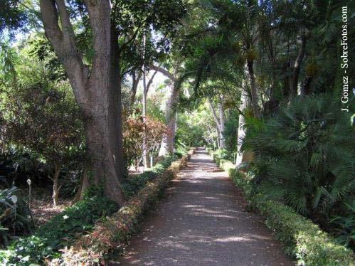 jardin-botanico-05