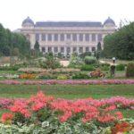 Dalias en el Jardin des Plantes de Paris