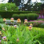 Paseando por bellos jardines ingleses