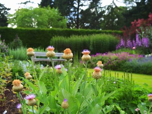 Paseando por bellos jardines ingleses for Jardines bellos fotos